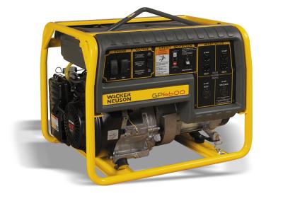 6600 Watt Generator